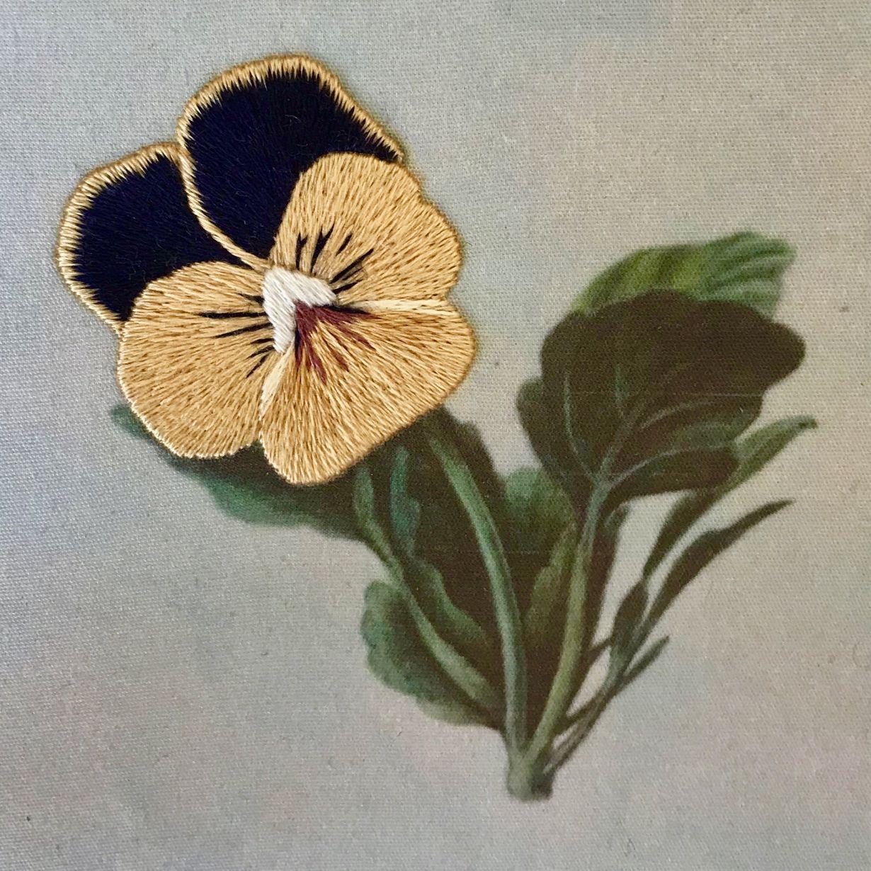 Silk Shading - Viola